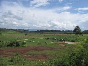 2010・8・13~アフリカ、エチオピア&ルワンダの旅(前納撮影) 404